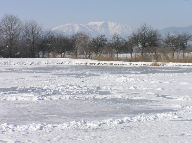 Neue seite 1 for Fischteich im winter